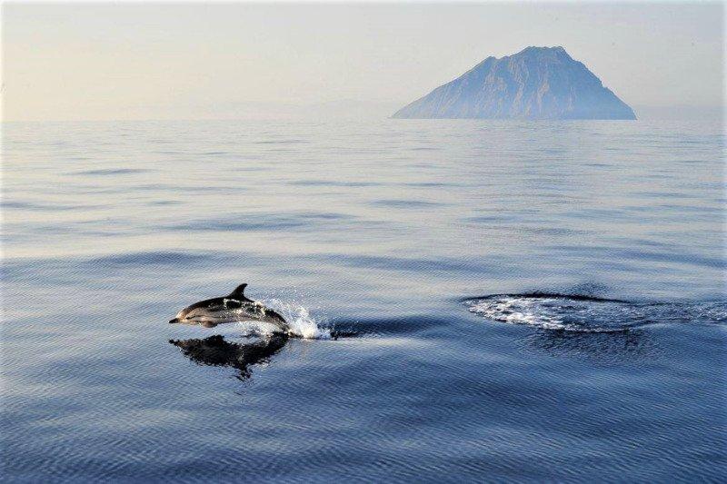 Aeolian island - Alicudi